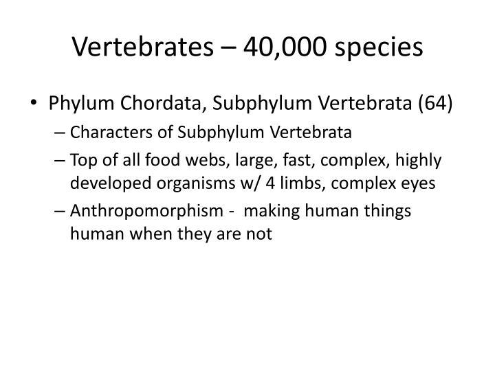 Vertebrates – 40,000 species