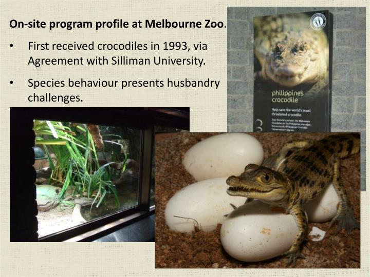 On-site program profile at Melbourne Zoo