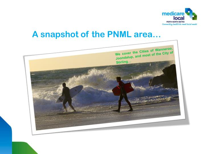 A snapshot of the PNML