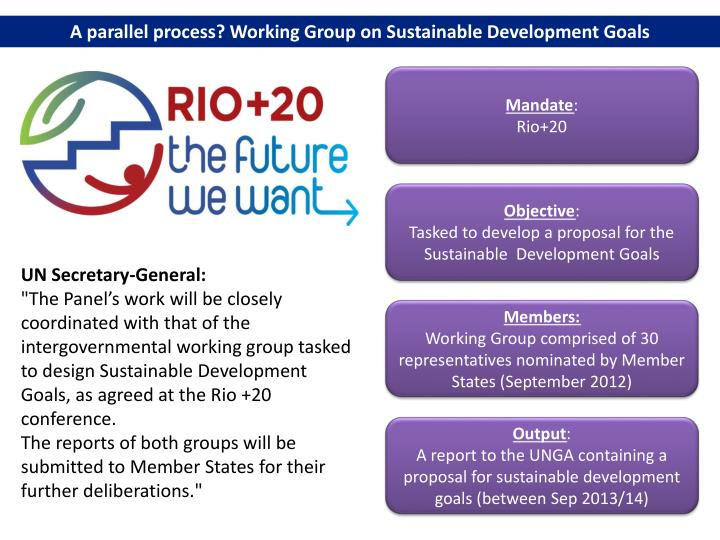 A parallel process? Working Group on Sustainable Development Goals