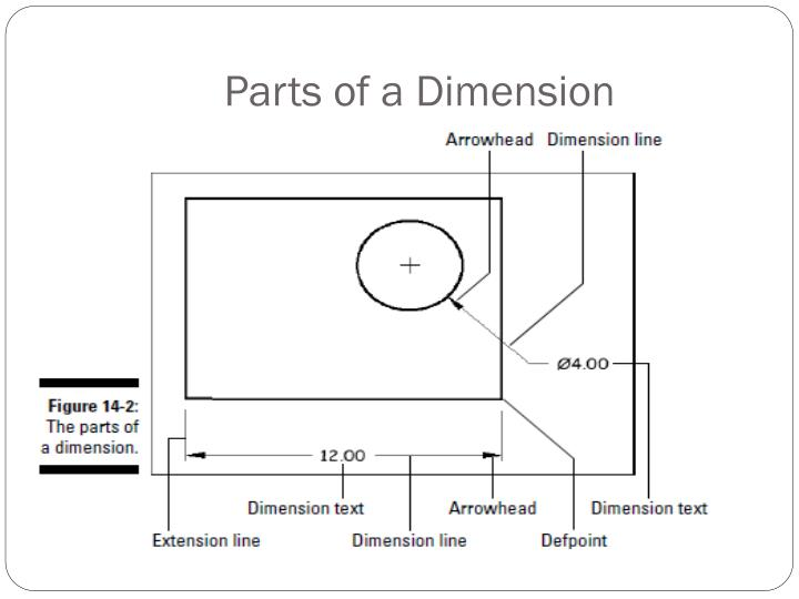 Parts of a Dimension