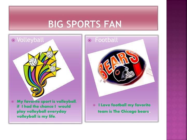 Big Sports Fan