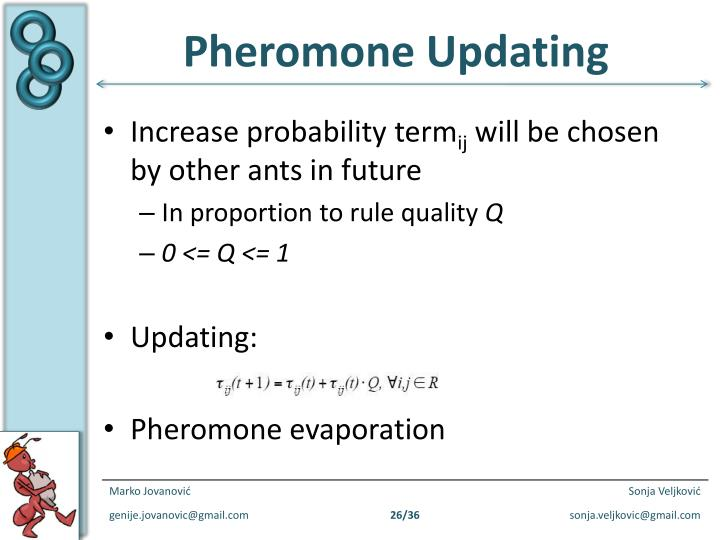 Pheromone Updating
