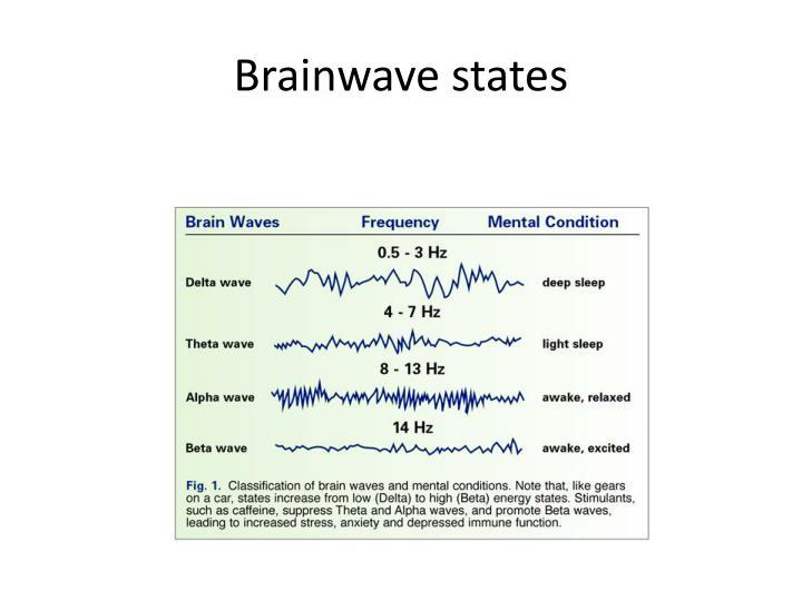 Brainwave states