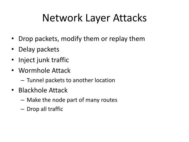 Network Layer Attacks