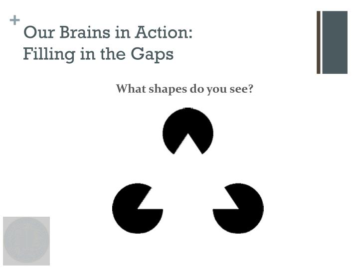 Our Brains in Action:
