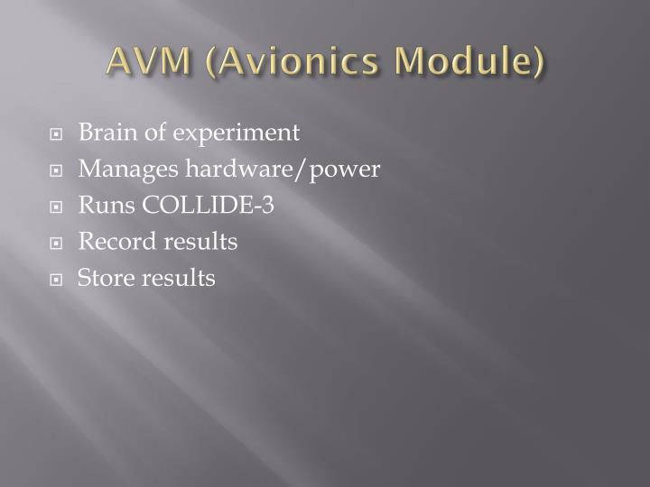 AVM (Avionics Module)