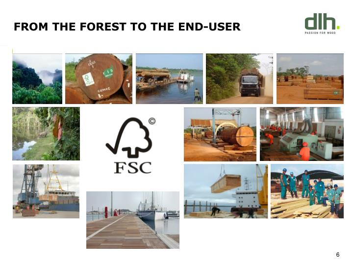 FROM THE FOREST TO THE END-USER