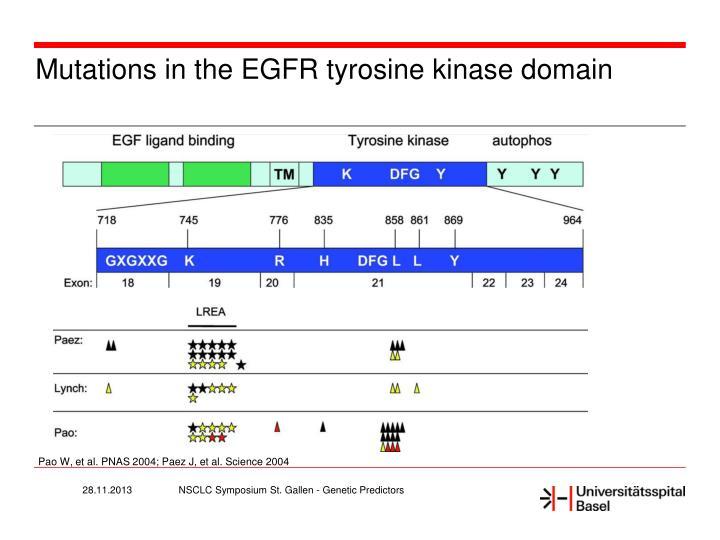 Mutations in the EGFR tyrosine kinase domain