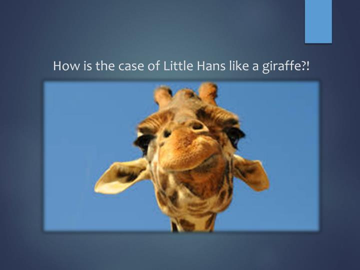 How is the case of Little Hans like a giraffe?!