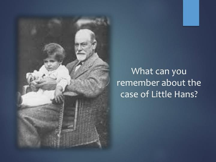 What can you remember about the case of Little Hans?