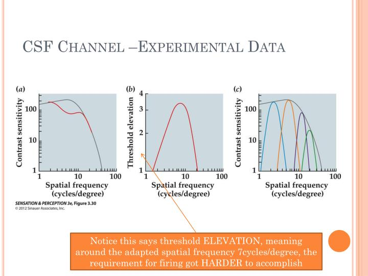 CSF Channel –Experimental Data