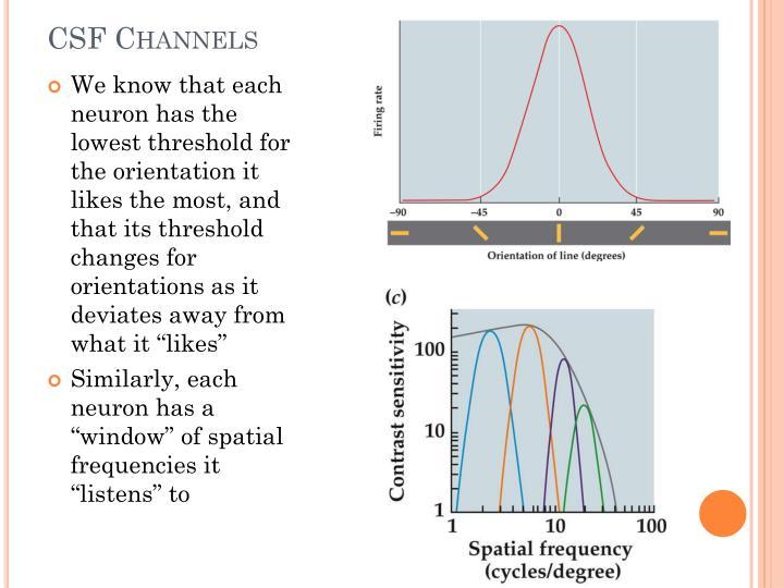 CSF Channels