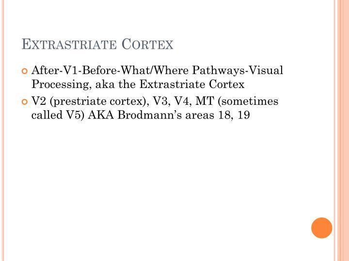 Extrastriate