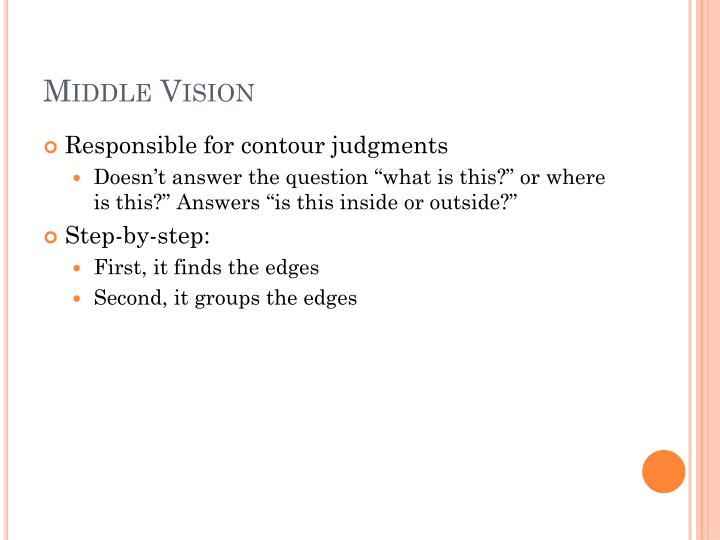 Middle Vision