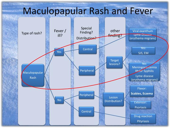 Maculopapular