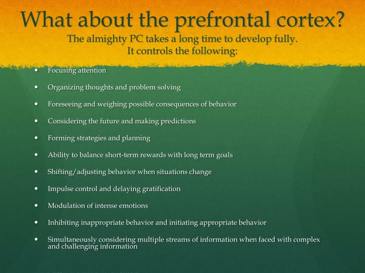 What about the prefrontal cortex?