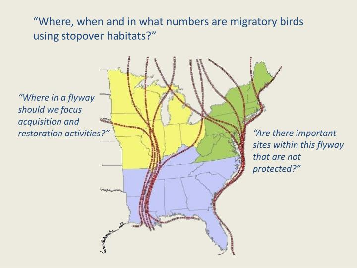 """Where, when and in what numbers are migratory birds using stopover habitats?"""