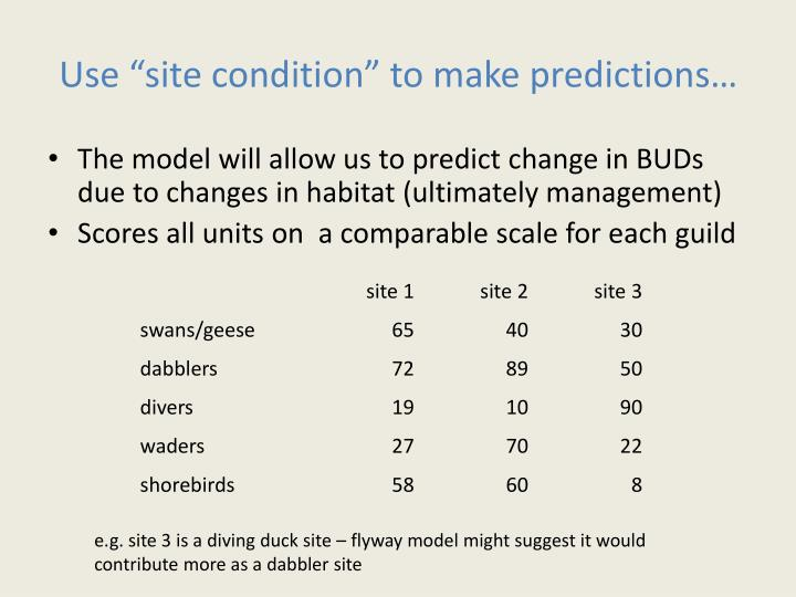 "Use ""site condition"" to make predictions…"