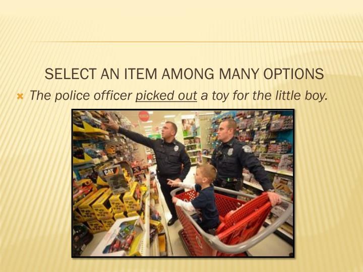 SELECT AN ITEM AMONG MANY OPTIONS