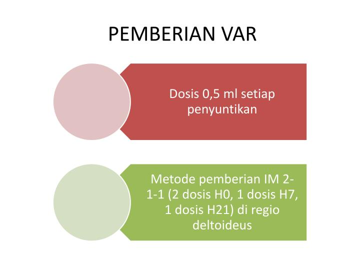 PEMBERIAN VAR