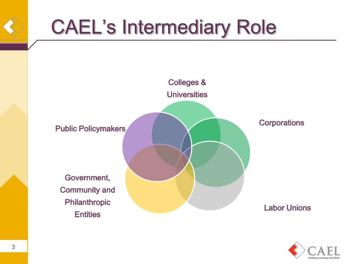 CAEL's Intermediary Role
