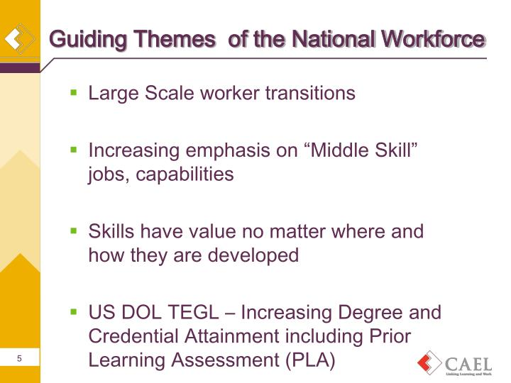 Guiding Themes  of the National Workforce