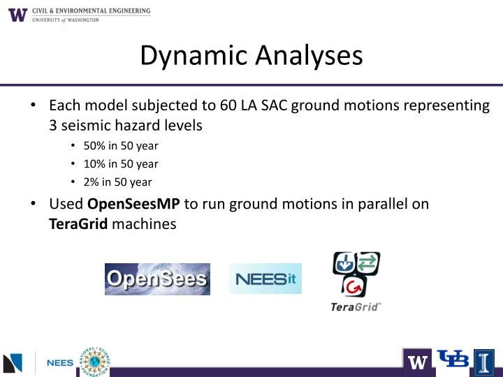 Dynamic Analyses