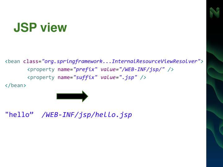 JSP view