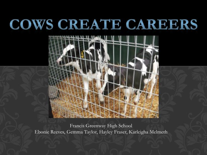 Cows Create Careers