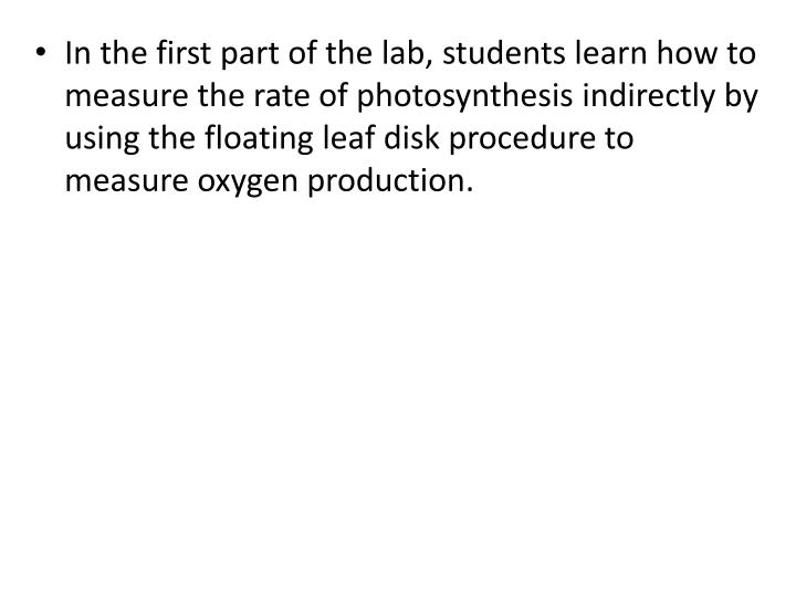 In the first part of the lab, students learn how to measure the rate of photosynthesis indirectly by using the floating leaf disk procedure to measure oxygen production.