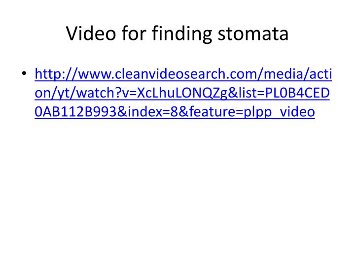 Video for finding stomata