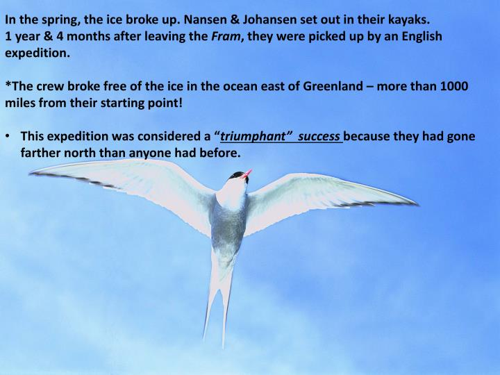 In the spring, the ice broke up. Nansen & Johansen set out in their kayaks.