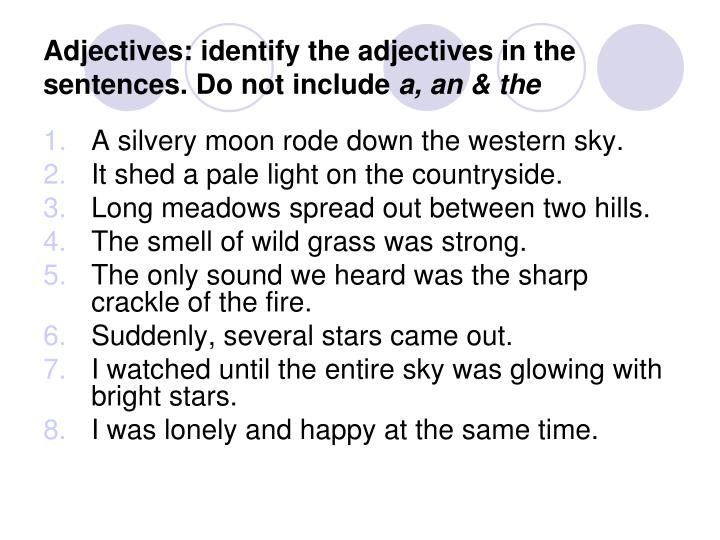 Adjectives: identify the adjectives in the sentences. Do not include