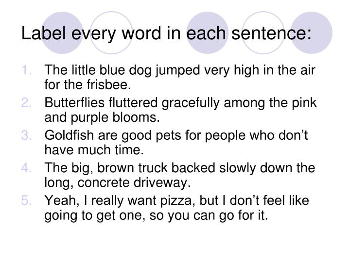 Label every word in each sentence:
