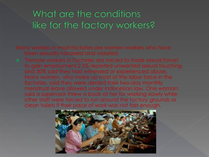 What are the conditions like for the factory workers?