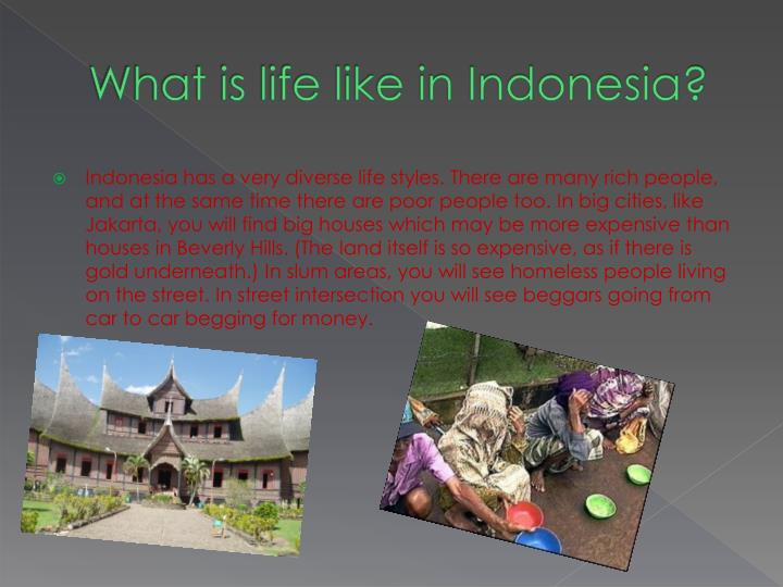 What is life like in Indonesia?