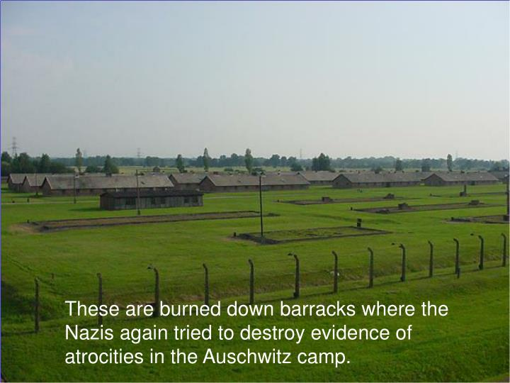 These are burned down barracks where the Nazis again tried to destroy evidence of atrocities in the Auschwitz camp.
