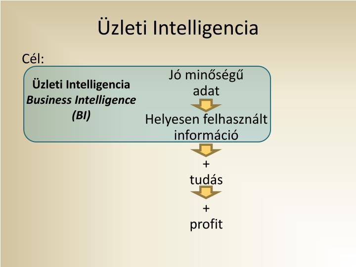 Üzleti Intelligencia