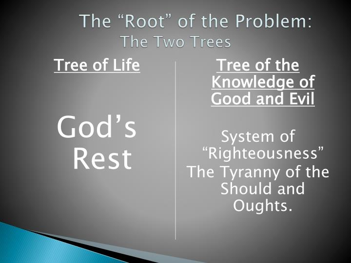 "The ""Root"" of the Problem:"