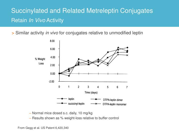 Succinylated and Related Metreleptin Conjugates