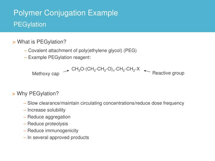 Polymer Conjugation Example