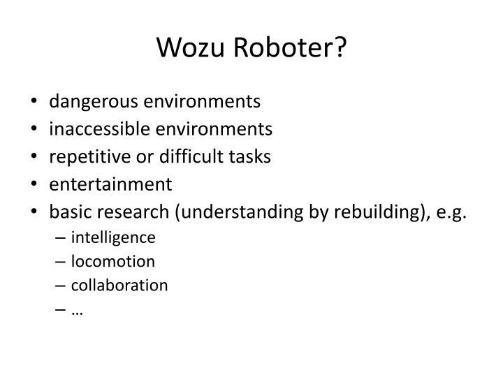 Wozu Roboter?