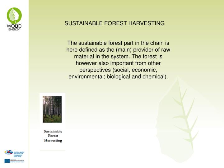 SUSTAINABLE FOREST HARVESTING
