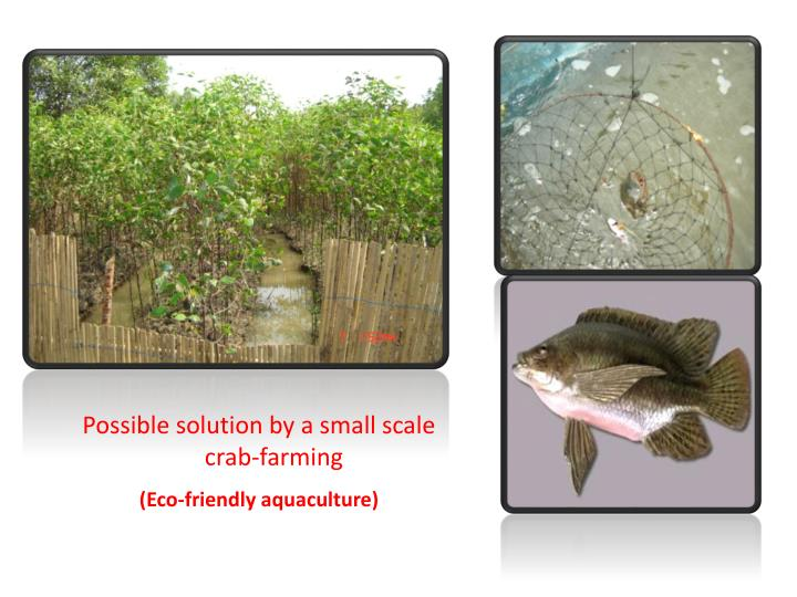 Possible solution by a small scale crab-farming