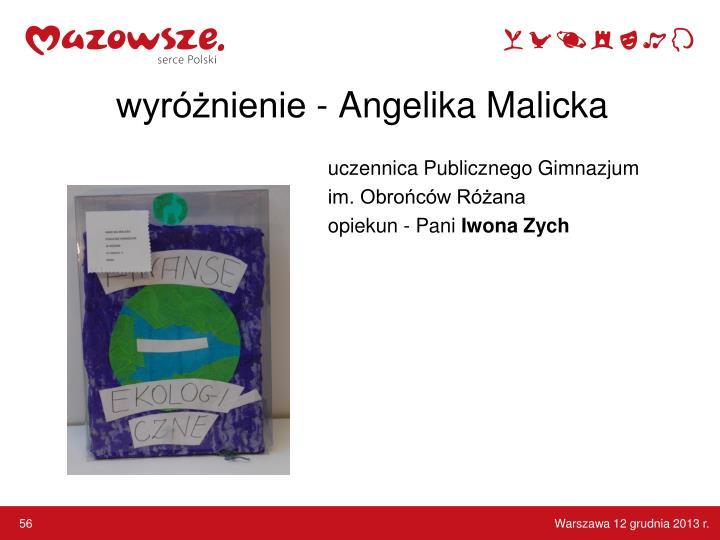 wyróżnienie - Angelika Malicka