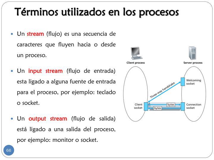 Términos utilizados en los procesos
