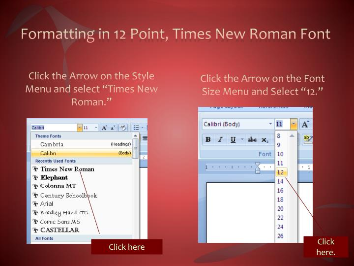 Formatting in 12 Point, Times New Roman Font