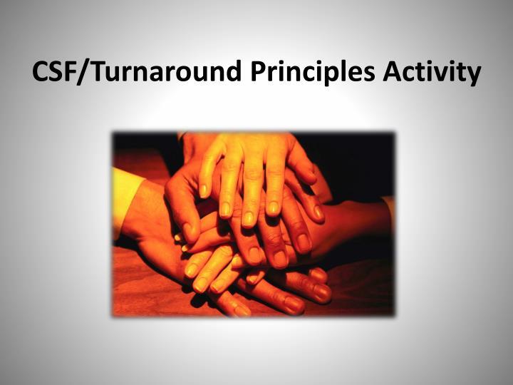 CSF/Turnaround Principles Activity