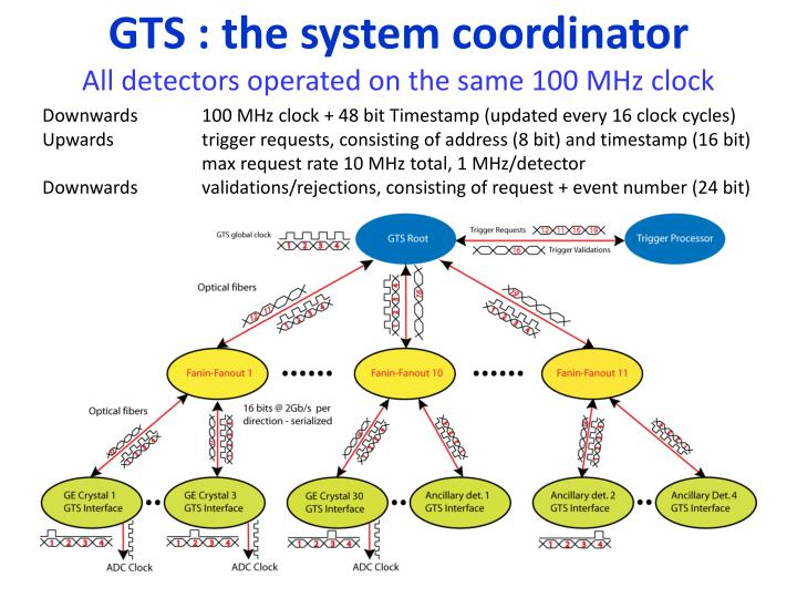 GTS : the system coordinator